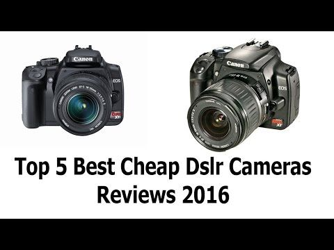Top 5 Best Cheap Dslr Cameras Reviews 2016 Best Dslr Camera Best Digital...