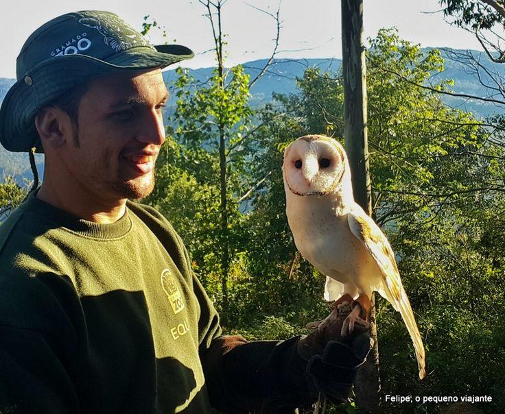 Gramado Zoo e Parque Gaúcho - 1 passaporte, 2 atrações super legais na Serra Gaúcha
