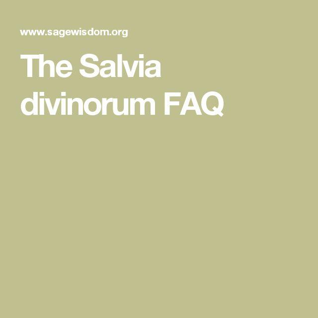 The Salvia divinorum FAQ