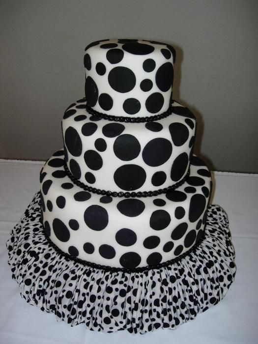 dalmation looking