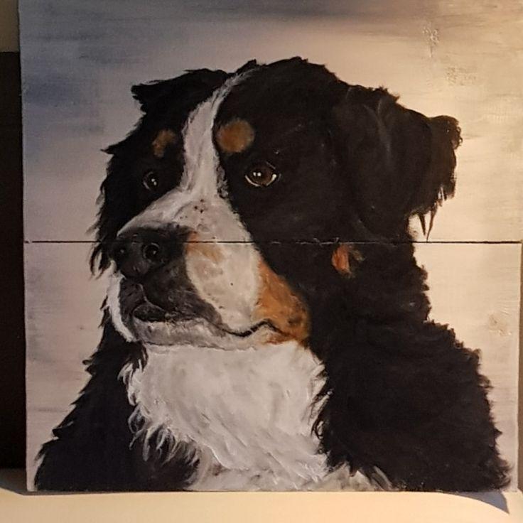 Dog Mandy