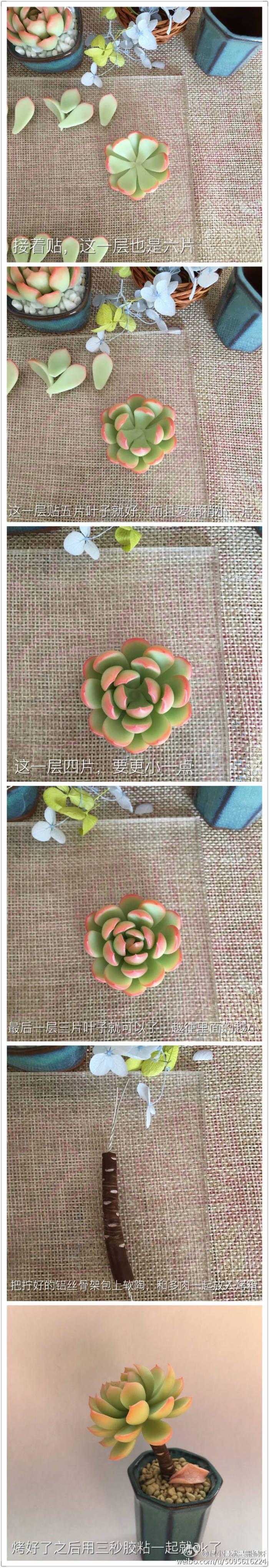软陶多肉植物教程(二) @何小慢-堆糖,美好生活研究所