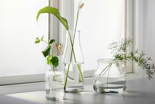 Blumen in Vasen ENSIDIG