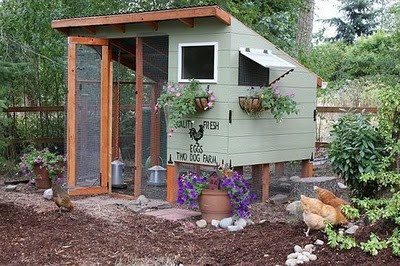 LOVE this chicken coop, maybe one day...
