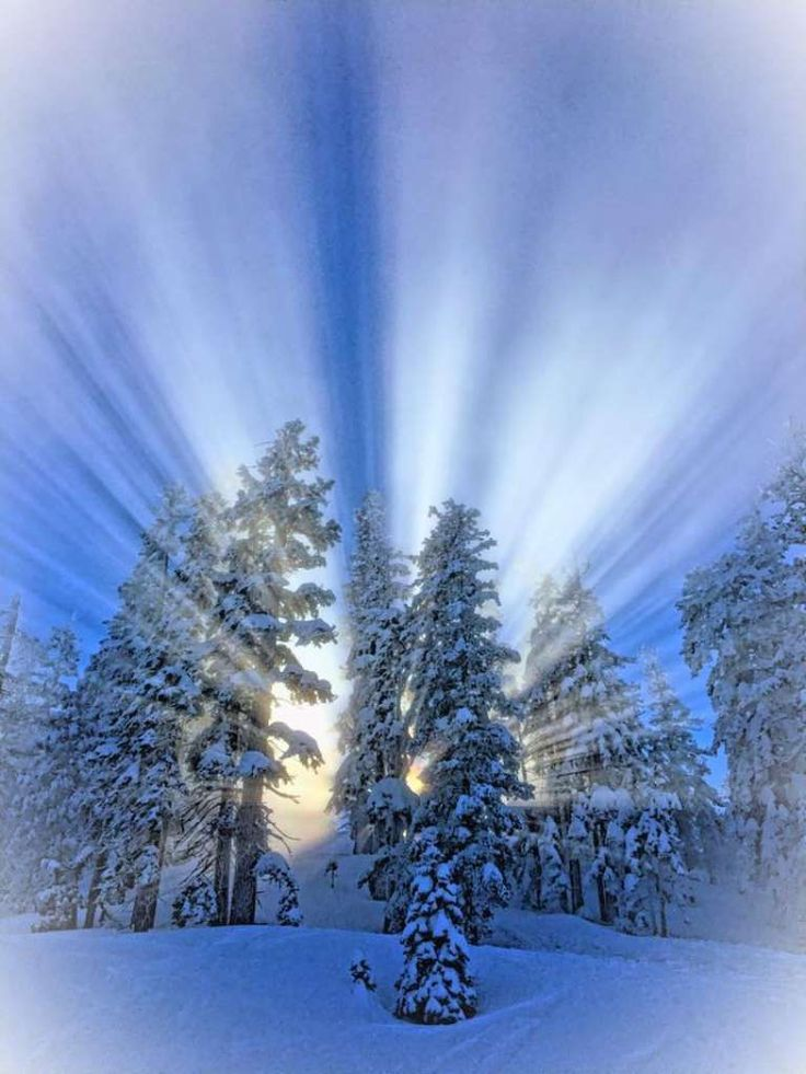 Heavenly Ski Resort, Presidents' Day weekend, February 2017 Photo: Nita Sandhu Schwartz