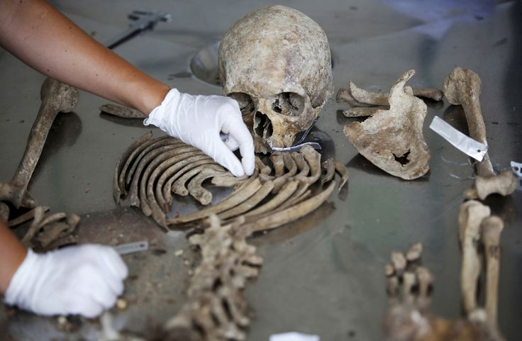 Senior Forensic Anthropologist Dragana Vucetic of the International Commission on Missing Persons works to attempt to identify the remains of a victim of the Srebrenica massacre at the ICMP center near Tuzla on June 11, 2015.