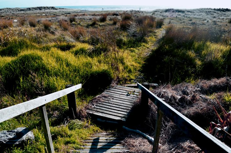 Lifes a beach- the wooden stairs and walkway over creek leading to Ohiwa beach
