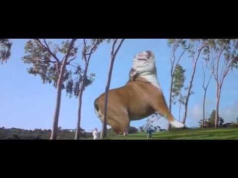 Wally Jurassic Park
