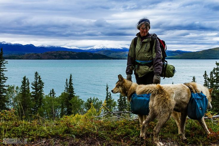 Sleeping with Sled Dogs in The Yukon  http://malloryontravel.com/2016/09/cool-places/north-america/canada/sleeping-sled-dogs-yukon/  Canon EOS 7D 28mm @ f14 1/100sec ISO 400