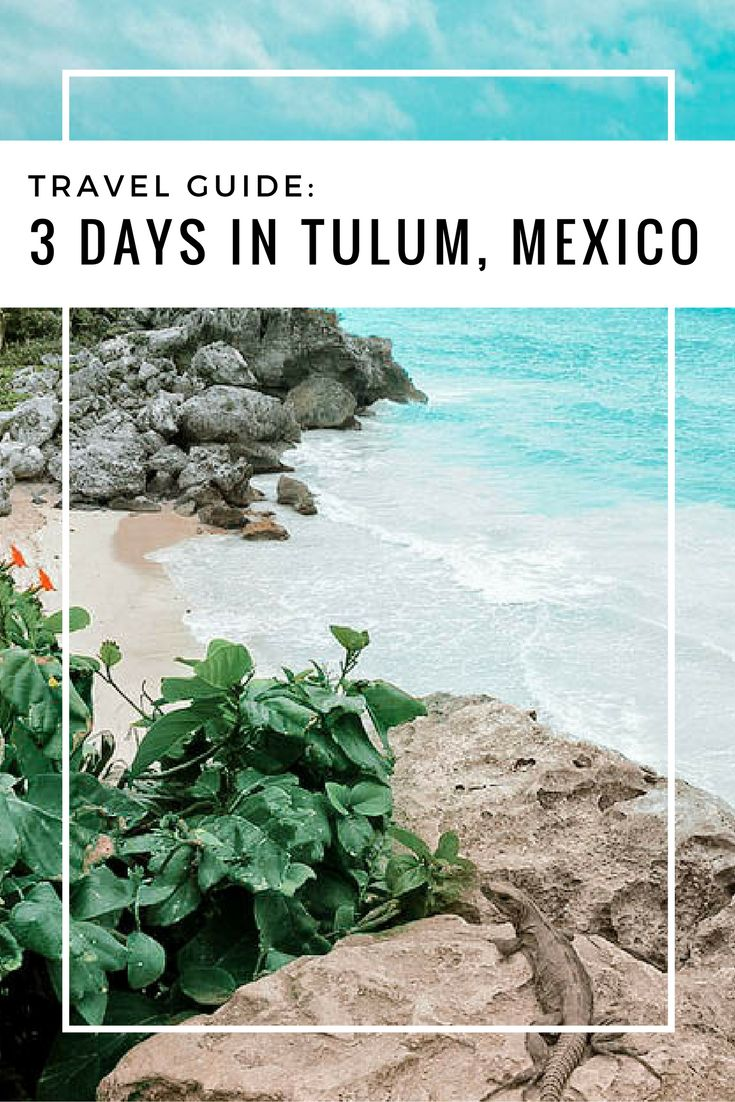 Your official guide to the beautiful Tulum, Mexico.