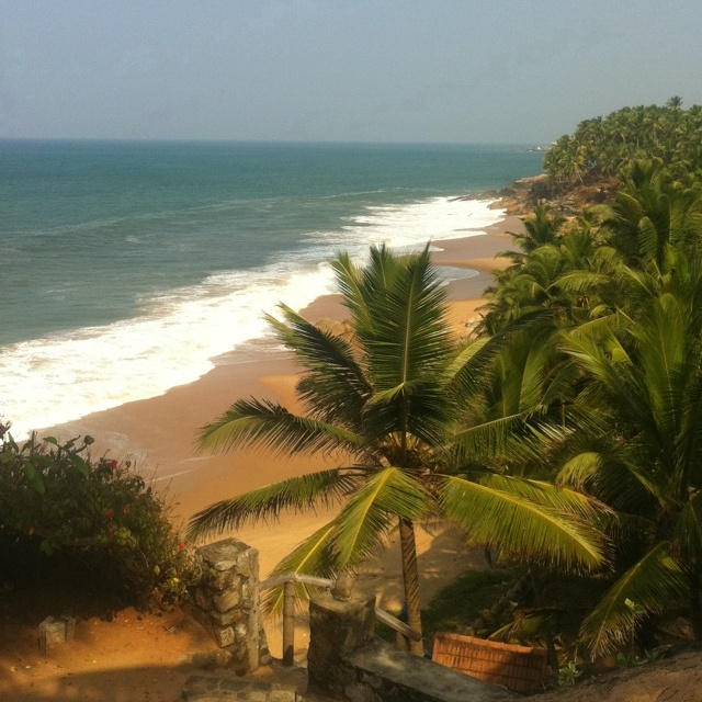 Kerala Places To Visit: 47 Best Good Time In Kerala Images On Pinterest