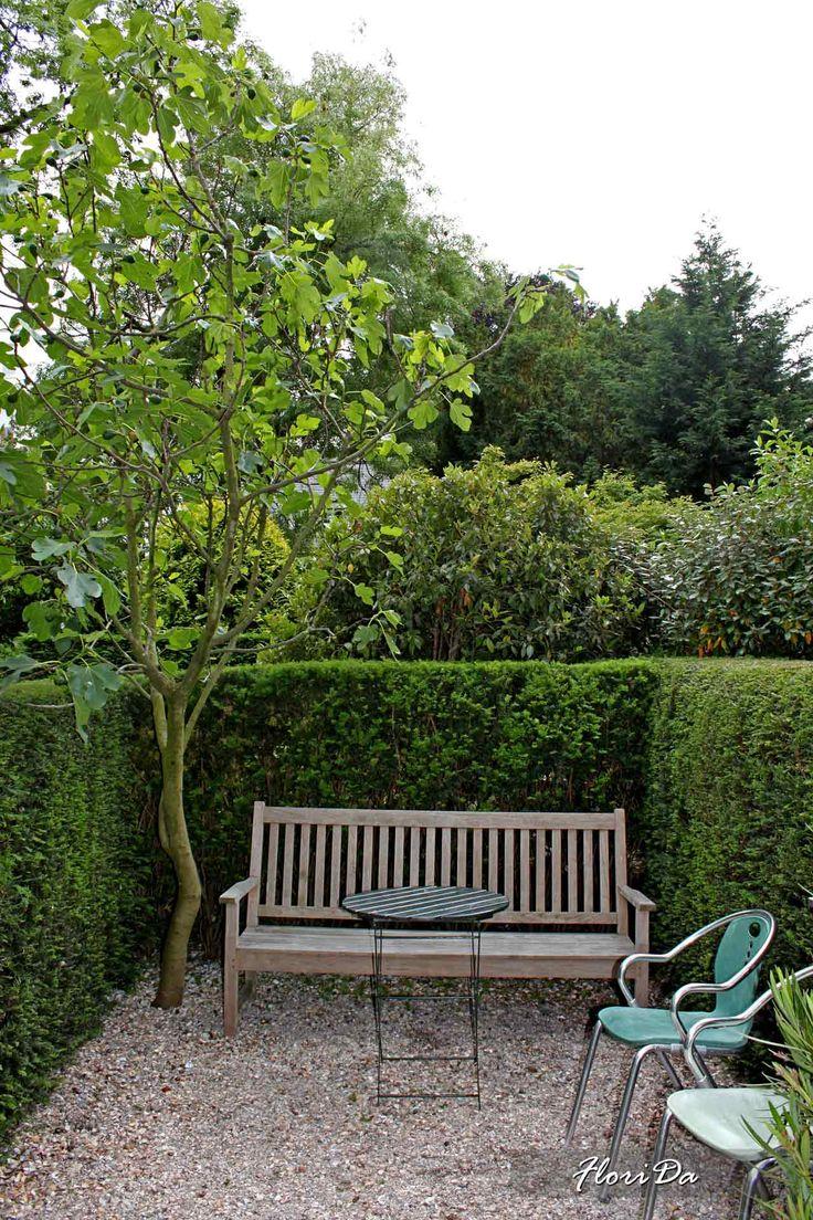 Городские сады Амстердама. Озеленение в Амстердаме. Примеры городского озеленения.