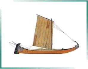 PORTUGAL MARÍTIMO: BARCOS TRADICIONAIS PORTUGUESES - Barco Moliceiro