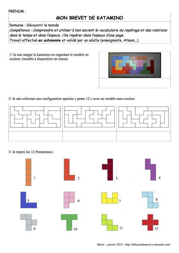 """Des ateliers avec des pentaminos. Merci à Dominique qui a eu l'idée de simplifier le jeu Katamino. Des fichiers """"coup de pouce"""", pour relancer la recherche. Correctifs : Correctifs : Correct…"""