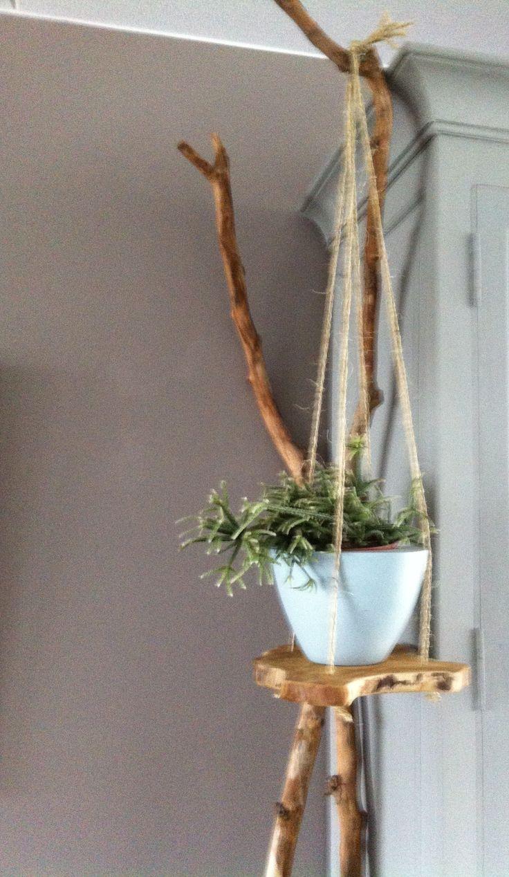 Plantenhanger van een boomschijf. Vier gaatjes geboord en daar dubbele touwen jute doorheen geknoopt.