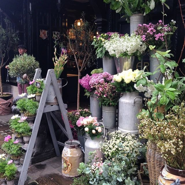 London Florist featured in Flower Magazine ... ✤ॐ ♥ ▾ ๑♡ஜ ℓv ஜ ᘡlvᘡ༺✿ ☾♡ ♥ ♫ La-la-la Bonne vie ♪ ❥•*`*•❥ ♥❀ ♢♦ ♡ ❊ ** Have a Nice Day! ** ❊ ღ‿ ❀♥ ~ Su 22nd Nov 2015 ... ~ ❤♡༻ ☆༺❀ .•` ✿⊱ ♡༻ ღ☀