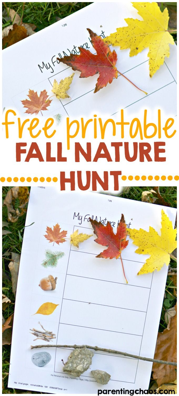 Fall Scavenger Nature Hunt With Free Printable Worksheet