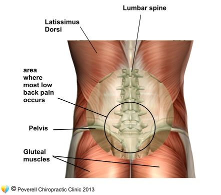 The Bone At Bottom Of Back What Causes A Stiff Back