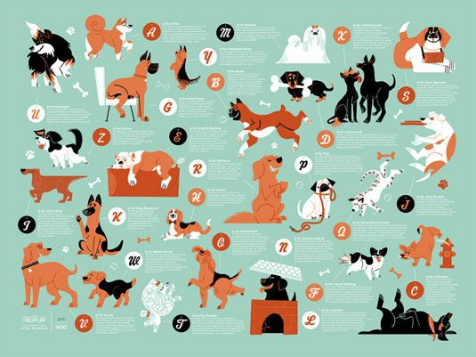 Cute poster charts the A-Z of dogs | Illustration | Creative Bloq