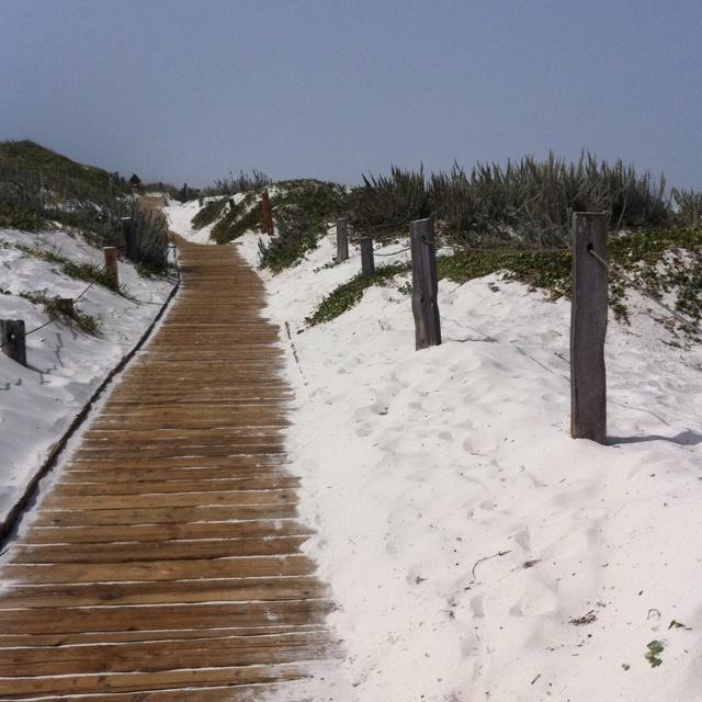Asilomar Beach Monterey California:  Dike,  Dyke, States Beaches, Beaches Monterey, White Sands, Seaside Beaches, Asilomar Beaches, Long Walks, California Beaches