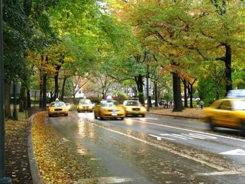 New York Autunno