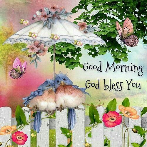 Good Morning Sunshine Vilma Santos : Best good morning images on pinterest buen dia