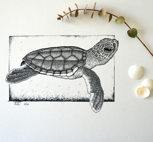 Želvička - malá kareta