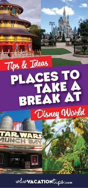 Great Places to Rest and Take a Break in Disney World – Courtney Rene