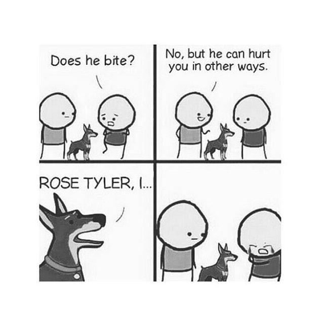 Ese maldito perro debe morir!!!!