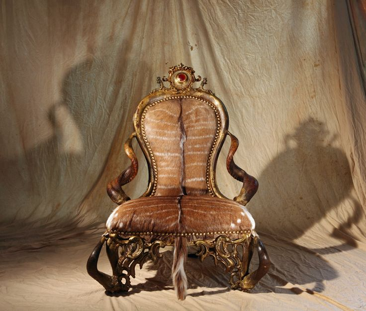 Michel Haillard 75 best chair images on pinterest | exotic, horns and unusual