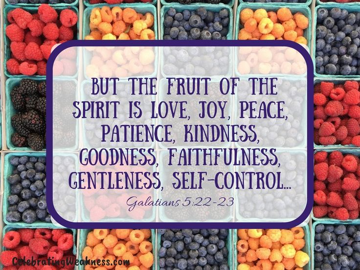 """But the fruit of the spirit is love, joy, peace, patience, kindness, goodness, faithfulness, genteleness, self control."" Galatians 5:22-23 #celebratingweakness #verse #bible #fruit #spirit"