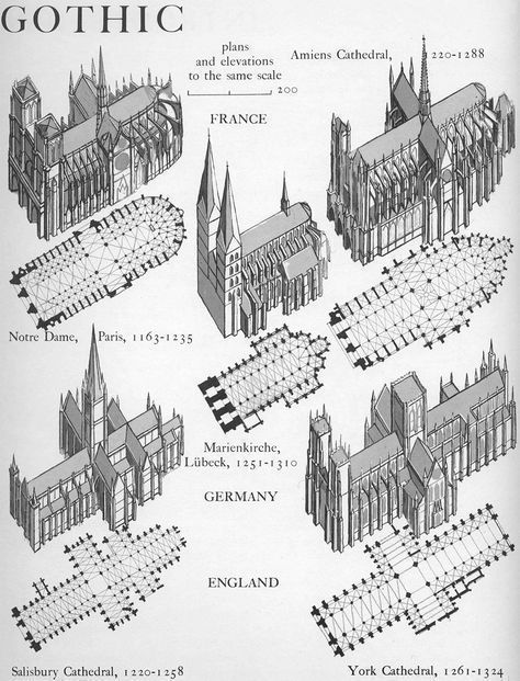 Gothic plans and elevations Graphic History of Architecture by John Mansbridge #gothicarchitecture