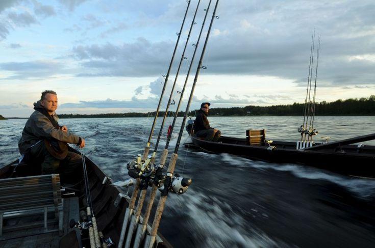 Des pêcheurs au saumon sur la rivière du Torne à Pello en Laponie