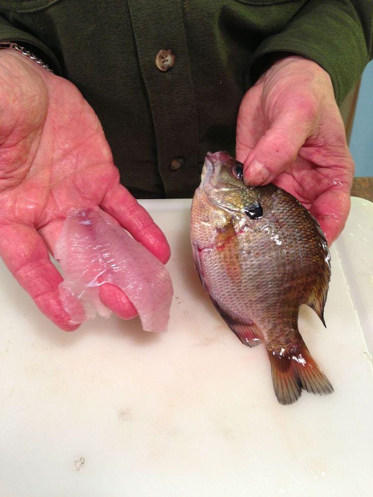 How to fillet boneless fresh pan fish you catch fish