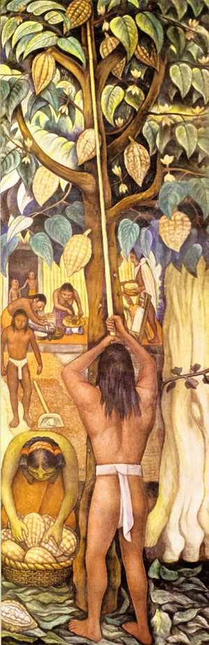 Aztec's harvesting Cacao Pods. Diego Rivera