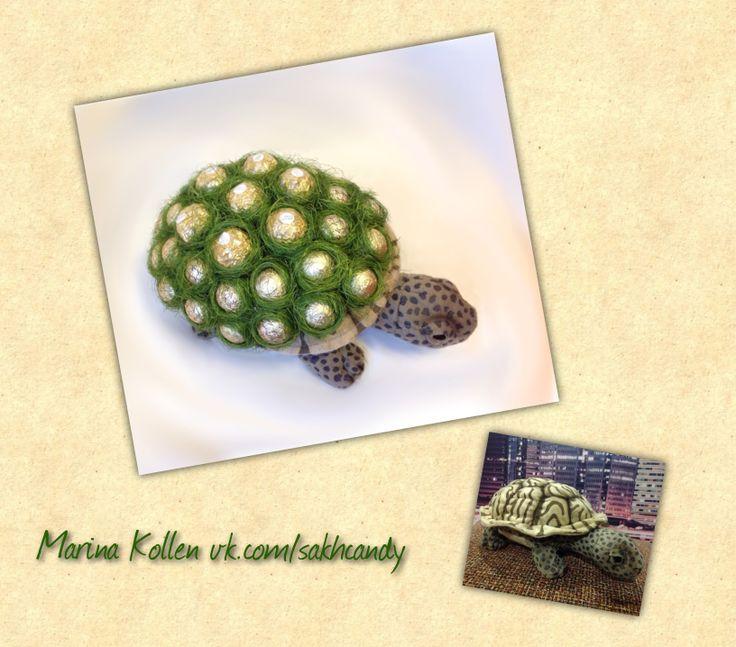 Sweet Turtle