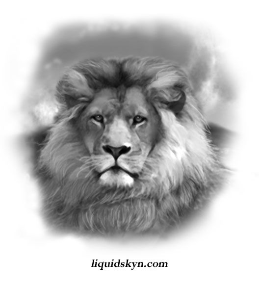 Awesome Lion Head Tattoos Design
