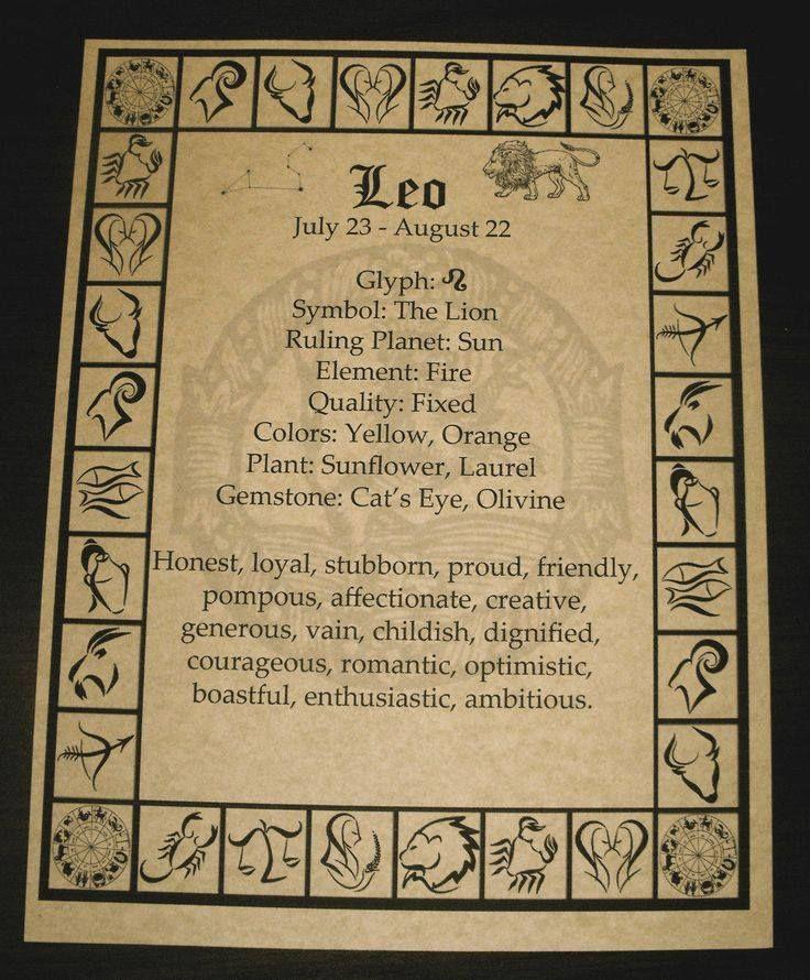 Zodiac Buch