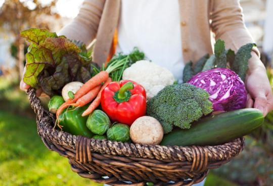 The alkaline diet has a growing legion of celebrity fans: Victoria Beckham, Gwyneth Paltrow, and Jennifer Aniston reportedly follow it, and now Ripa. Should you?