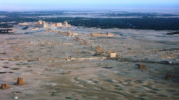 Dżihadyści z Państwa Islamskiego zajęli Palmirę #ISIS #terroryzm