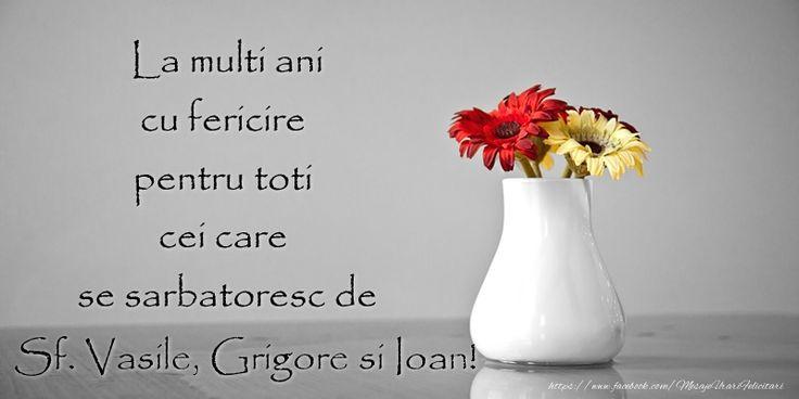La multi ani cu fericire pentru toti cei care  se sarbatoresc de Sf. Vasile, Grigore si Ioan!