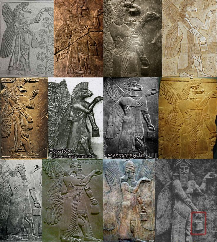 Annunaki. All have wings. All are wearing bracelets with a disc. All are carrying a pouch with handle in one hand, and thrusting a pine cone forward with the other. Note the mechanical looking musculature, the tassels, the fringed robes, the cigar shaped implements tucked into their sashes. Note the squared beards on some, the finned heads of the others.