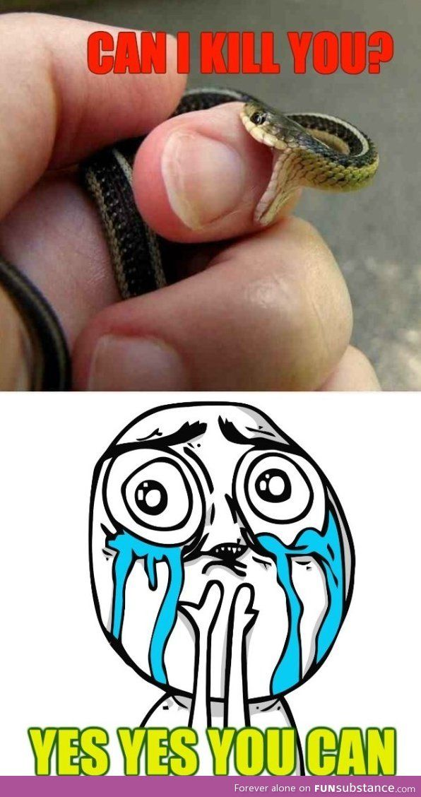 Whenever my baby snakes bite me... ;u;                                                                                                                                                                                 More