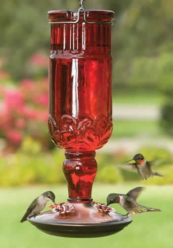 Duncraft.com: Red Antique Bottle Hummingbird Feeder -- what's better than one hummingbird?  THREE hummingbirds!