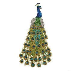Free Embroidery Software Jef   Swnpa124 Peacock Embroidery Design
