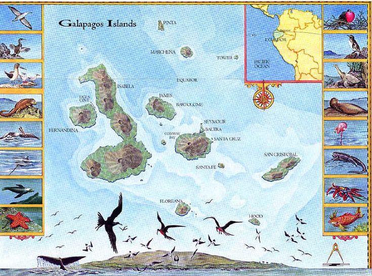 Tour the Galapagos