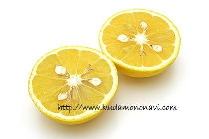 黄金柑黄金柑の来歴は不明ですが、明治時代には鹿児島県日置郡で「黄蜜柑(きみかん)」として食べられていたようです。のちに「黄金柑(おうごんかん)」という名前が付けられ、今もこの名前で流通しています。神奈川県では「ゴールデンオレンジ」とも呼ばれます。