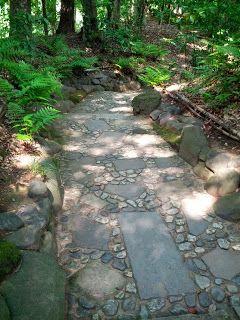 Garden in Tokyo Japan Annan Ihmemaa: japani