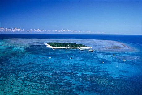 Save on local Cairns Reef Trips, Rainforest Tours, and Accommodation.