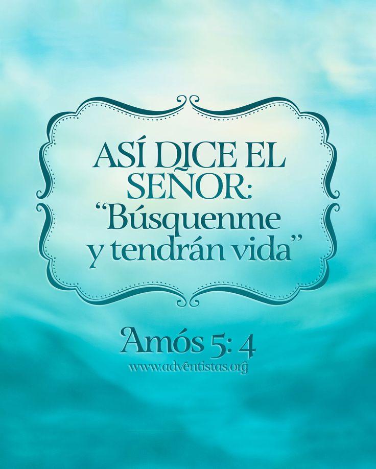 #Biblia #lecturadiaria #Amos